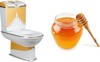 Можно ли употреблять мёд при поносе взрослым и детям?